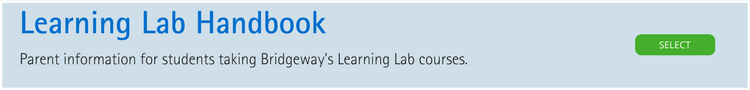 learning lab handbook